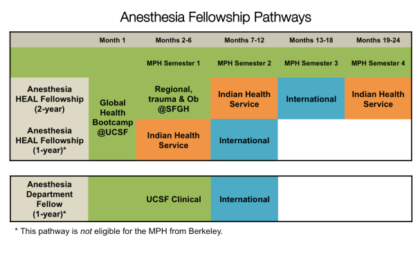 Anesthesia Pathways options